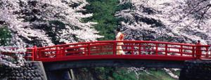 japan05-colore-Copia