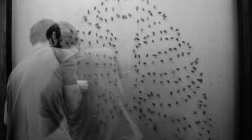 Valentina_Piccinni_davide_dormino