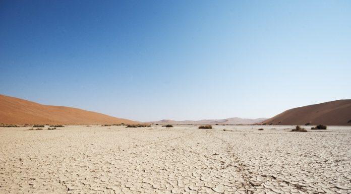 17- Deserto del Namib