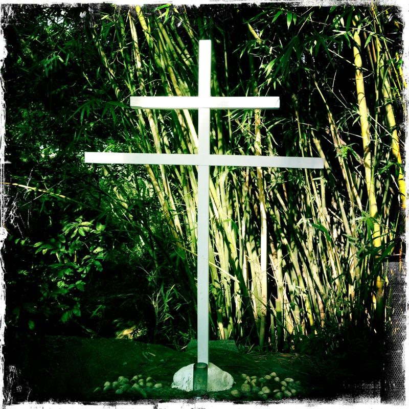 1_Santo Cruzeiro, il simbolo sacro del Daime
