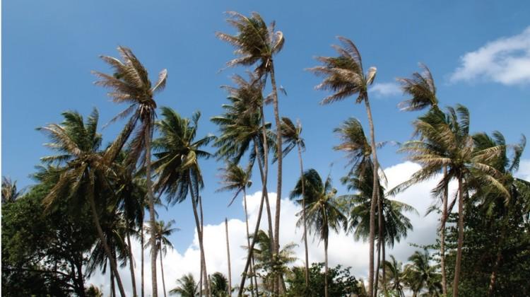 Krabi   เกาะสมุย