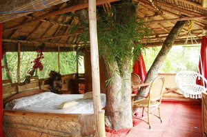 Safari_Land_farm-hotel_india_the_trip_magazine