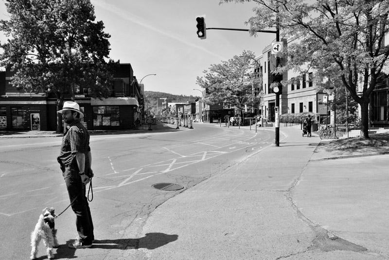 luca_salice_canada_Montreal_Plateau_the_trip_magazine (2)