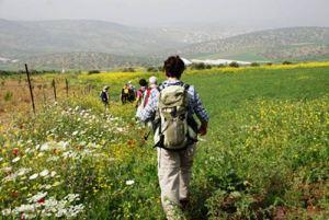 Palestina-the-trip-magazine