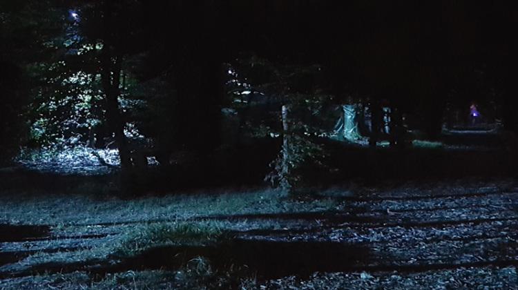 il Parco delle Groene di notte di Villa Arconati