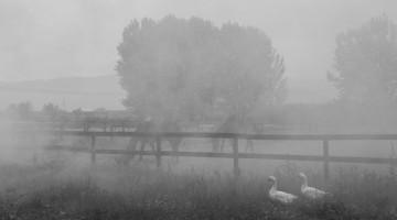 25 aprile 2015 | Mosummanno Terme, all'Agriturismo Il Bottaccino
