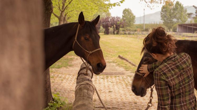 25 aprile 2015  Mosummanno Terme, Agriturismo Il Bottaccino   la preparazione dei cavalli prima della partenza