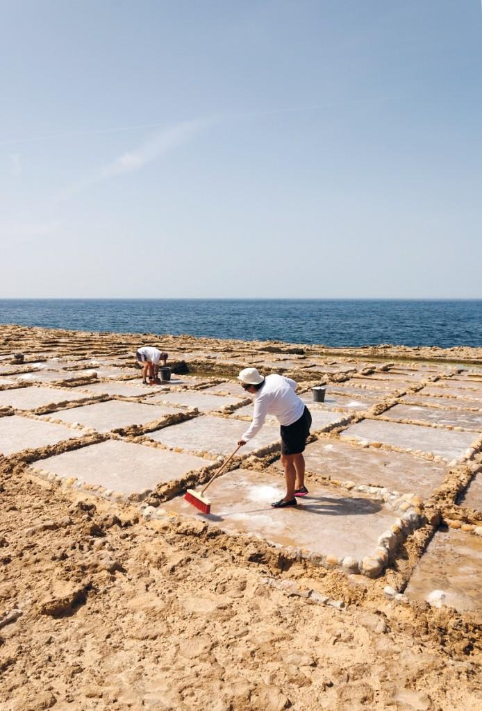 La famiglia Cini raccoglie il sale dai vasconi di Xwejni. Foto di Gabriele Furia