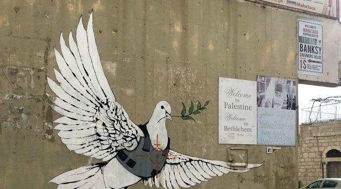 murales colomba palestina